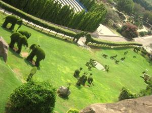Animal shaped garden