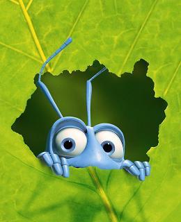 coding-bugs